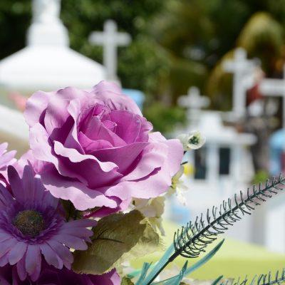 Profesionali kapų priežiūra – gyvųjų ir mirusiųjų ramybei
